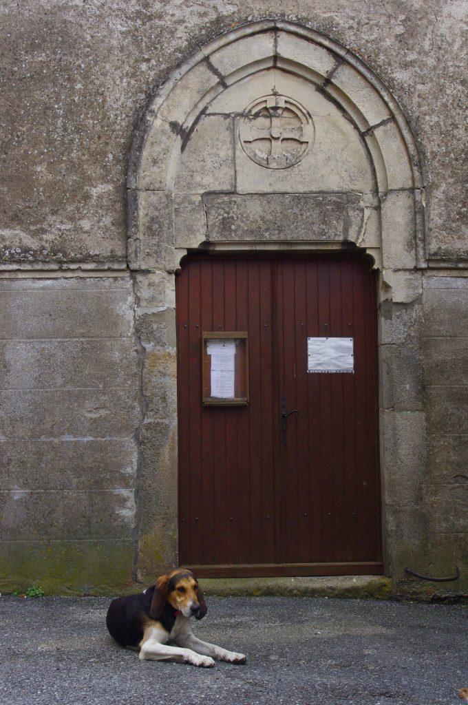 Filou and Chapel, Labastide Esparbairenque