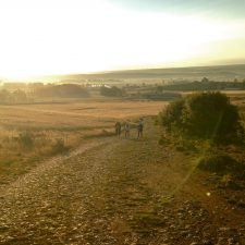 Should I Walk Another Camino?