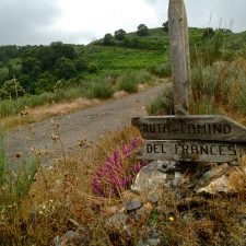 How Writing a Book is a lot like Walking a Camino