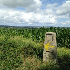 Camino Magic in the Real World; Continuing to Follow the Yellow Arrows