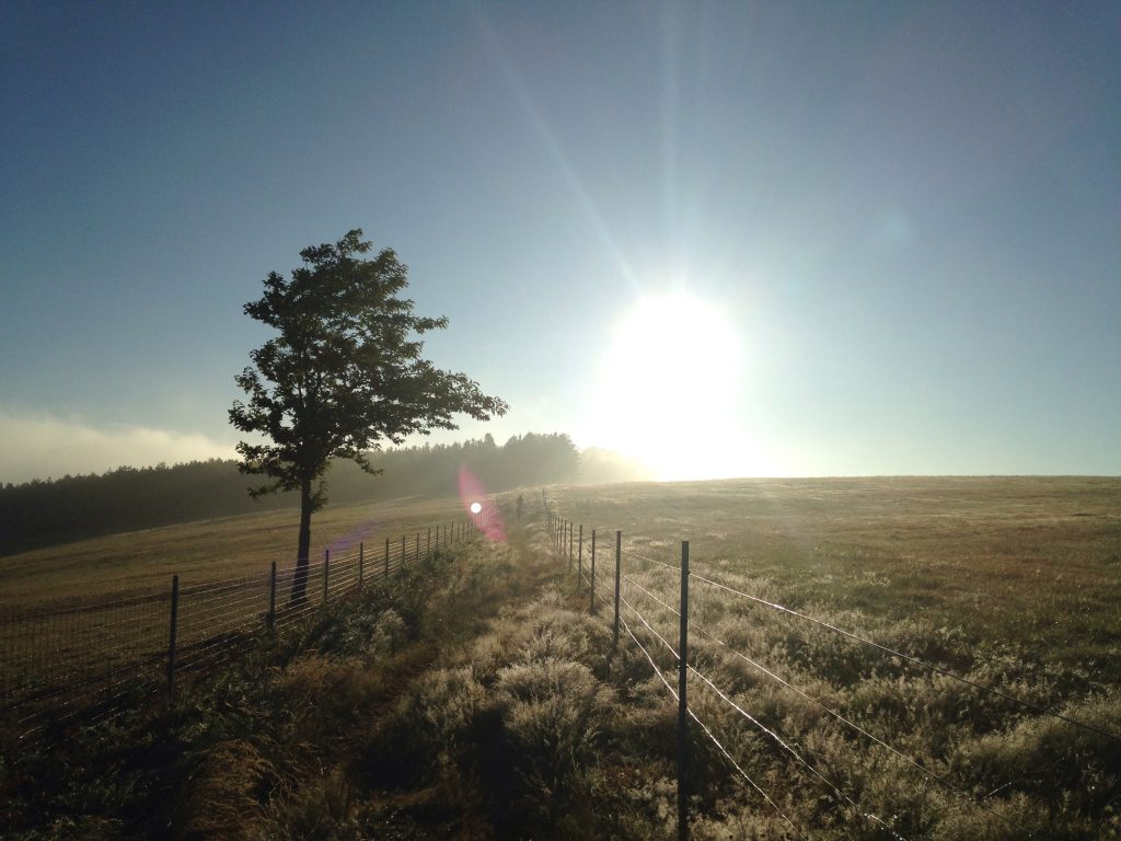 rising sun, Camino Primitivo