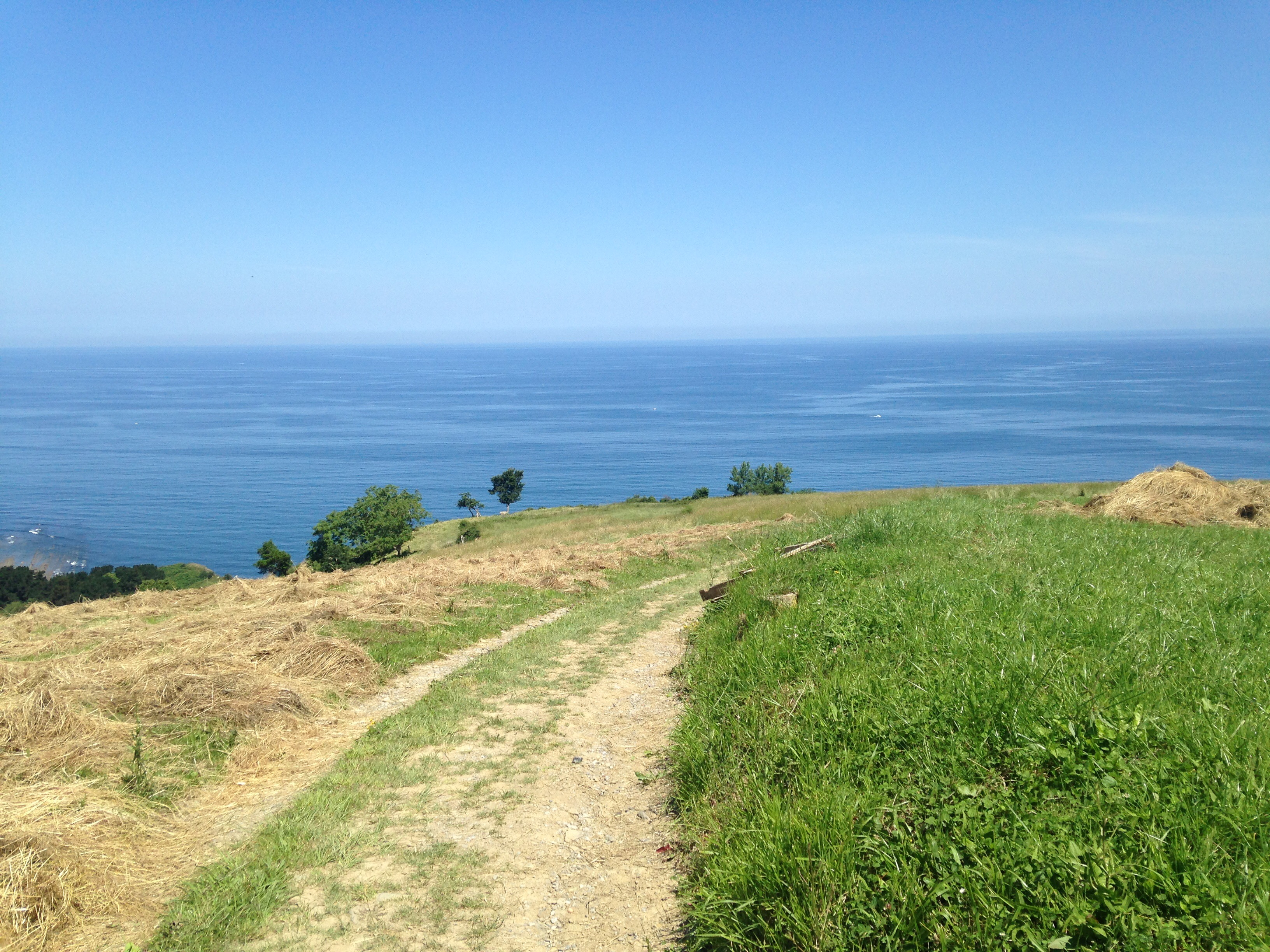 Path leading to the sea, Camino del Norte, Spain