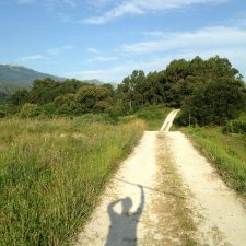 Solo Travel on the Camino