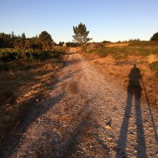 The Last, Perfect Camino Day; Day 9 on the Camino del Norte (Miraz to Sobrado dos Monxes, 25km)