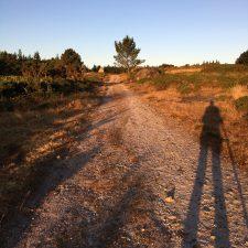 The Last, Perfect Camino Day; Day 9 on the Camino del Norte (Miraz to Sobrado dos Monxes, 25km)