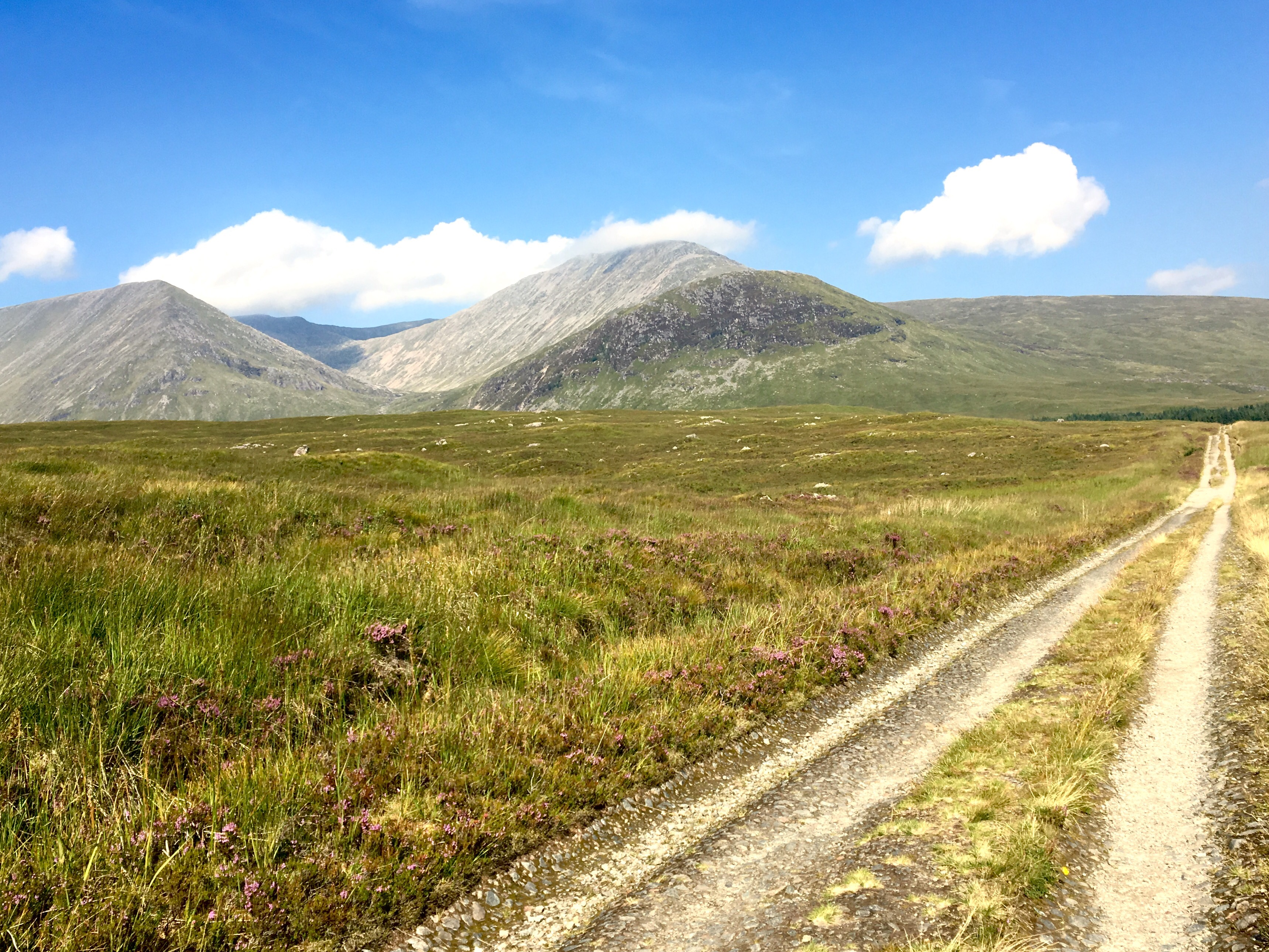 Moorland, West Highland Way, Scotland