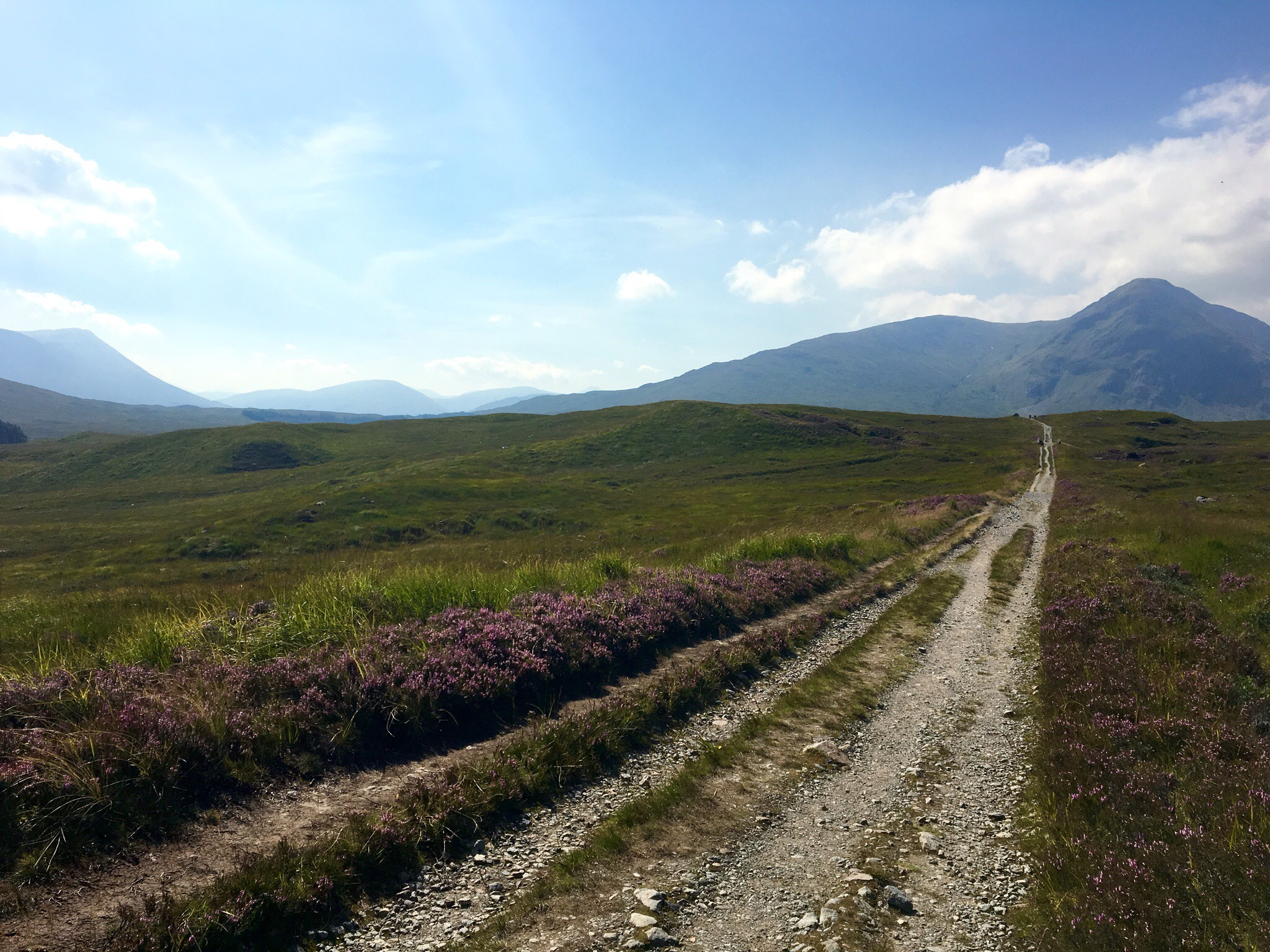 Path through moorland, West Highland Way, Scotland