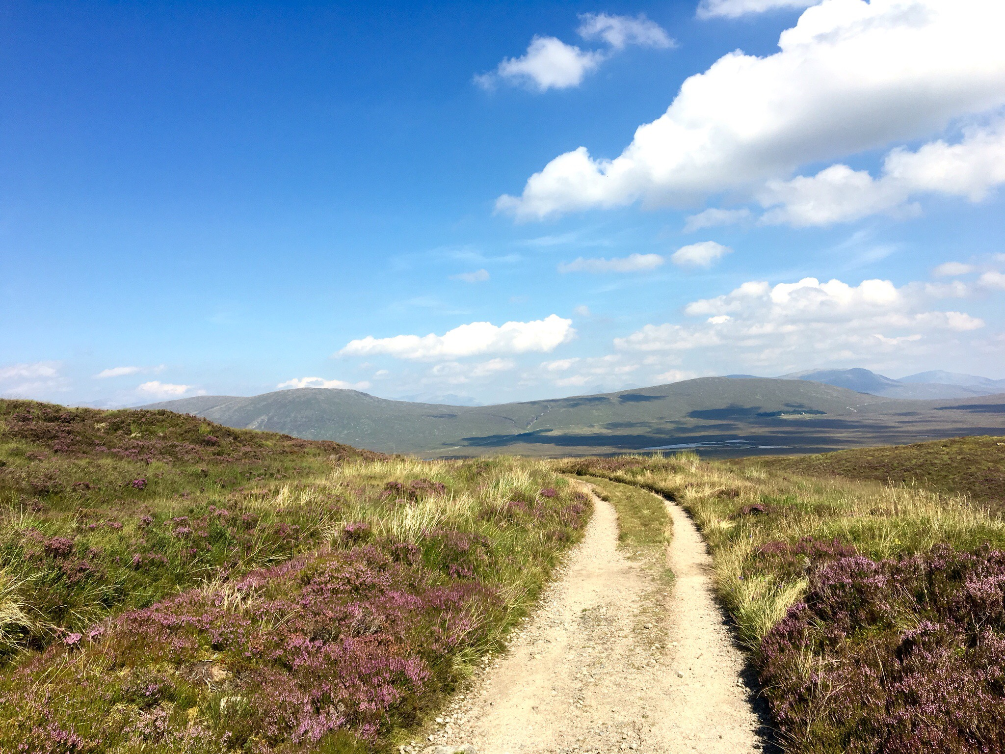 Path under a blue sky, West Highland Way, Scotland