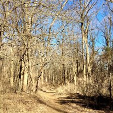 Secret Passageways and Hidden Trails; New Adventures in Hiking (and upcoming travel news!)