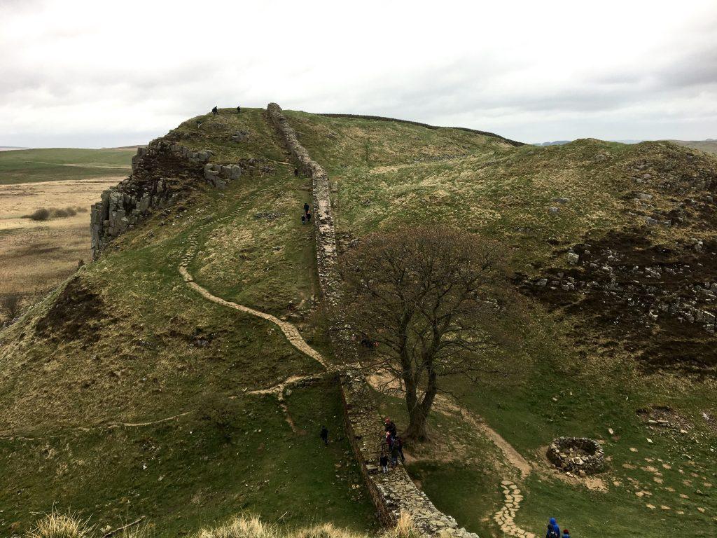 Robin Hood Tree, Hadrian's Wall, England