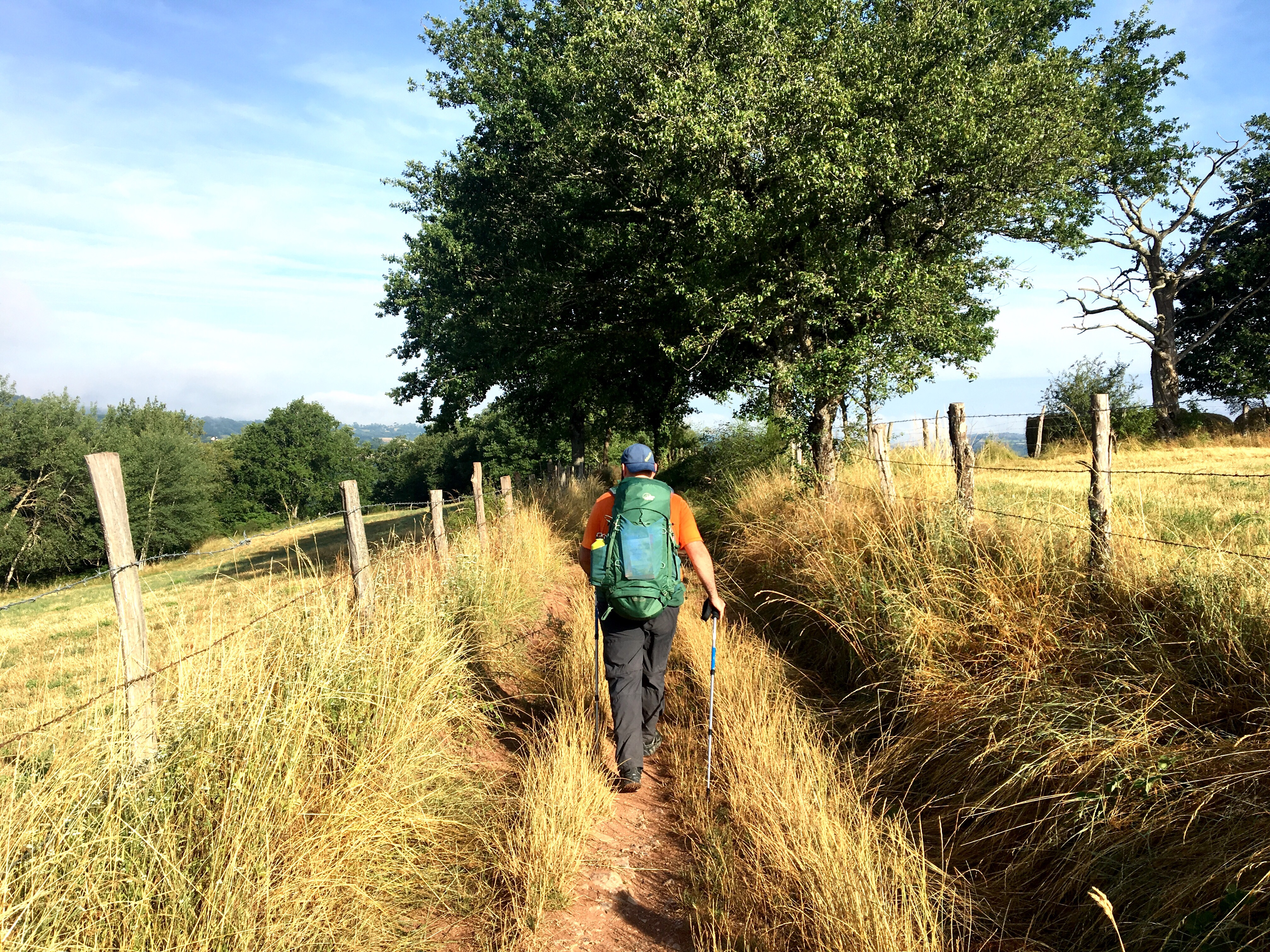 Walking with Mario, Chemin du Puy