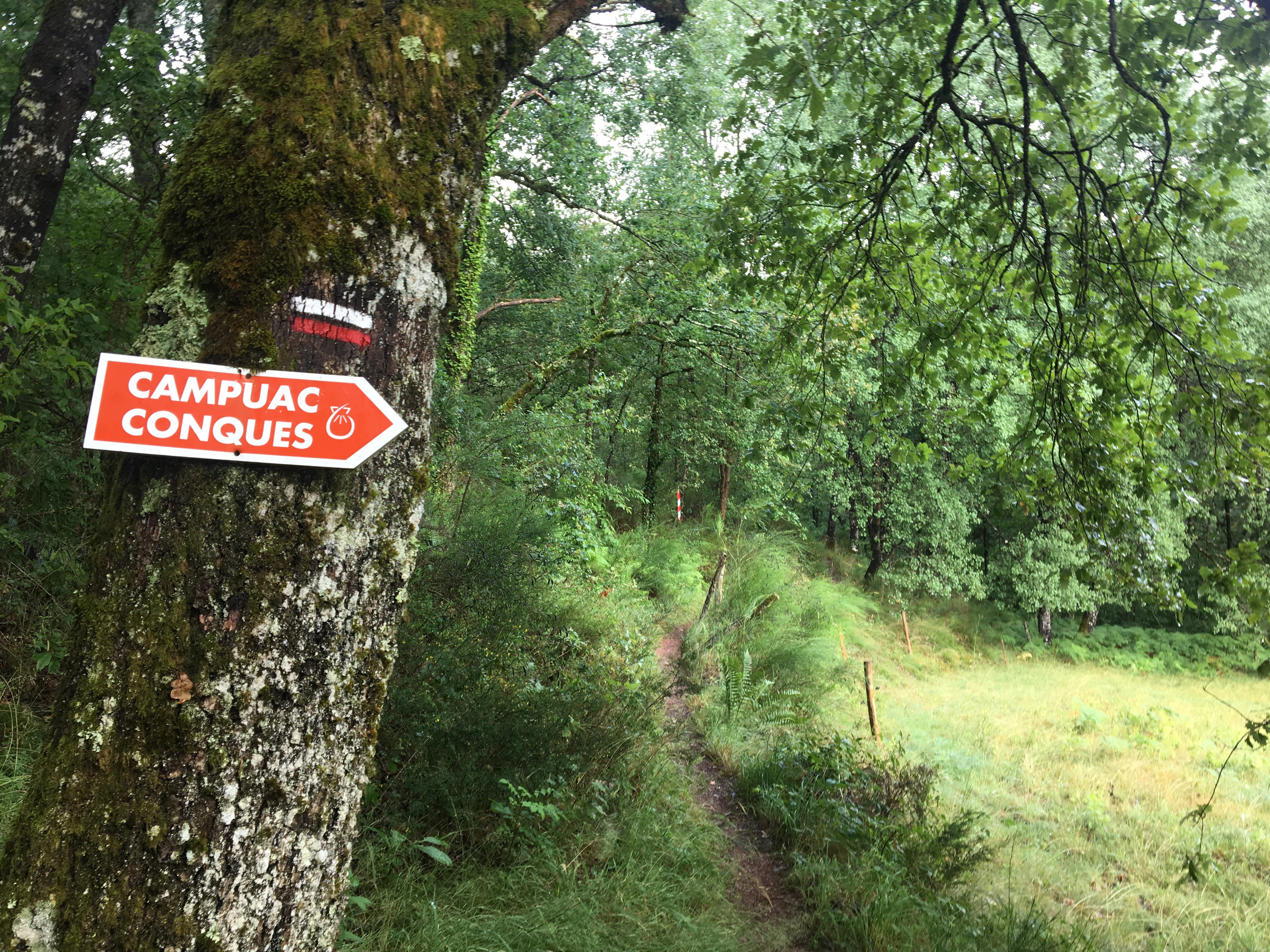 Following the signs on the Chemin