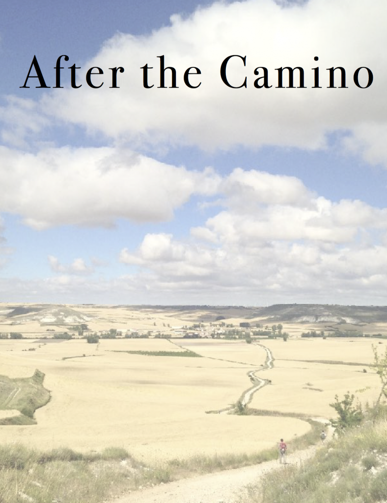 E-book cover image After the Camino
