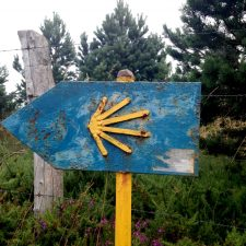 Revealing my latest Project: 'After the Camino' e-book!