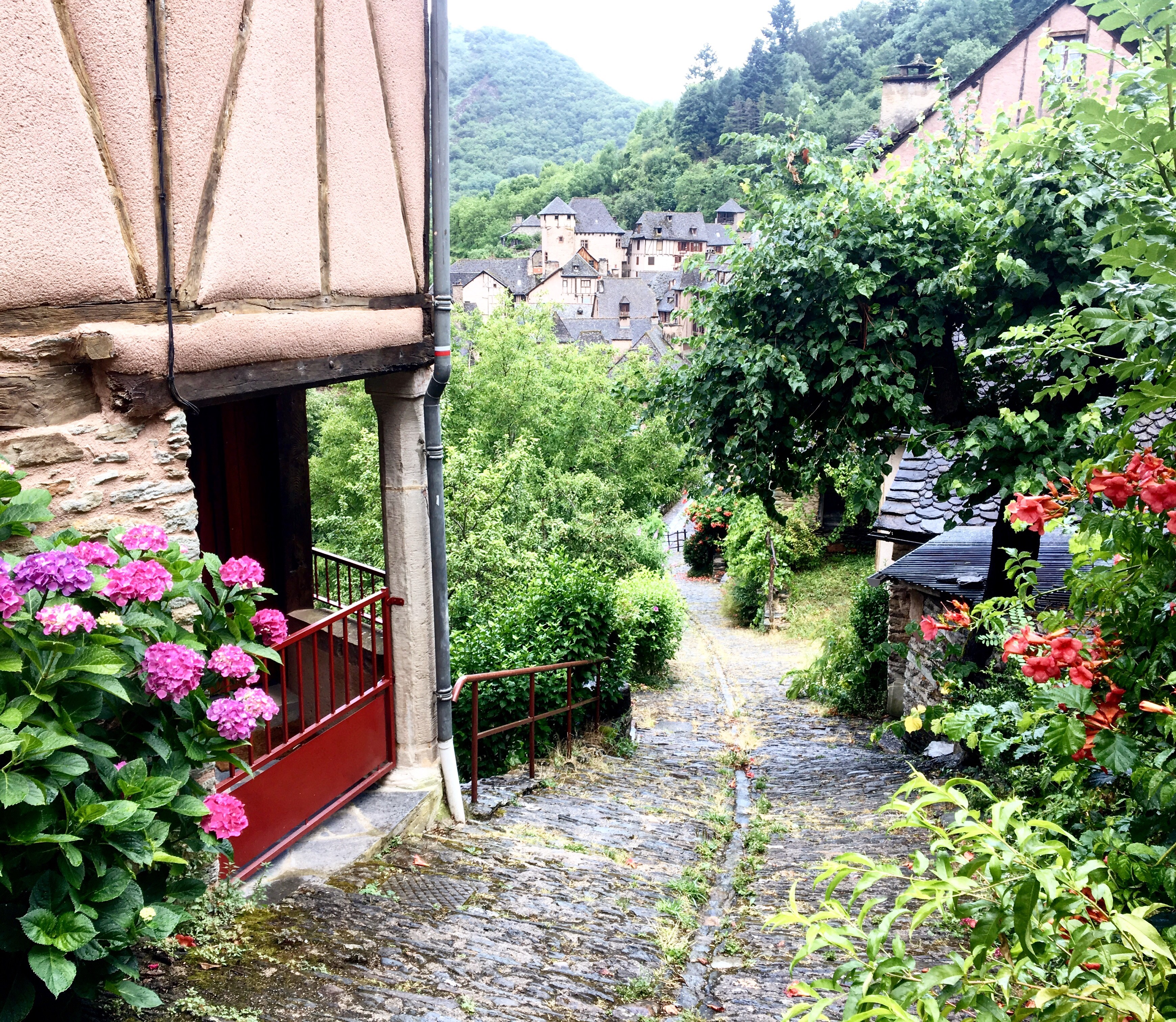 Walking down to Conques, Chemin du Puy