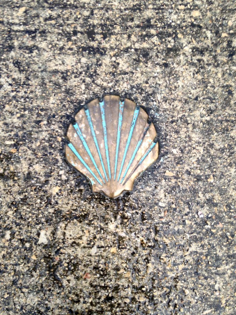 Camino shell