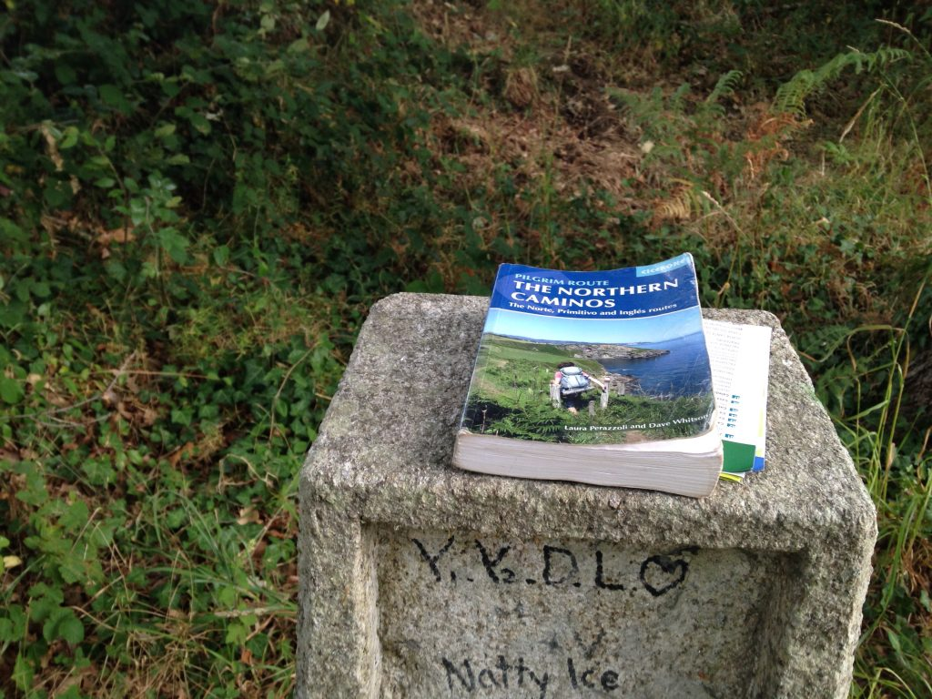 Camino del Norte guidebook