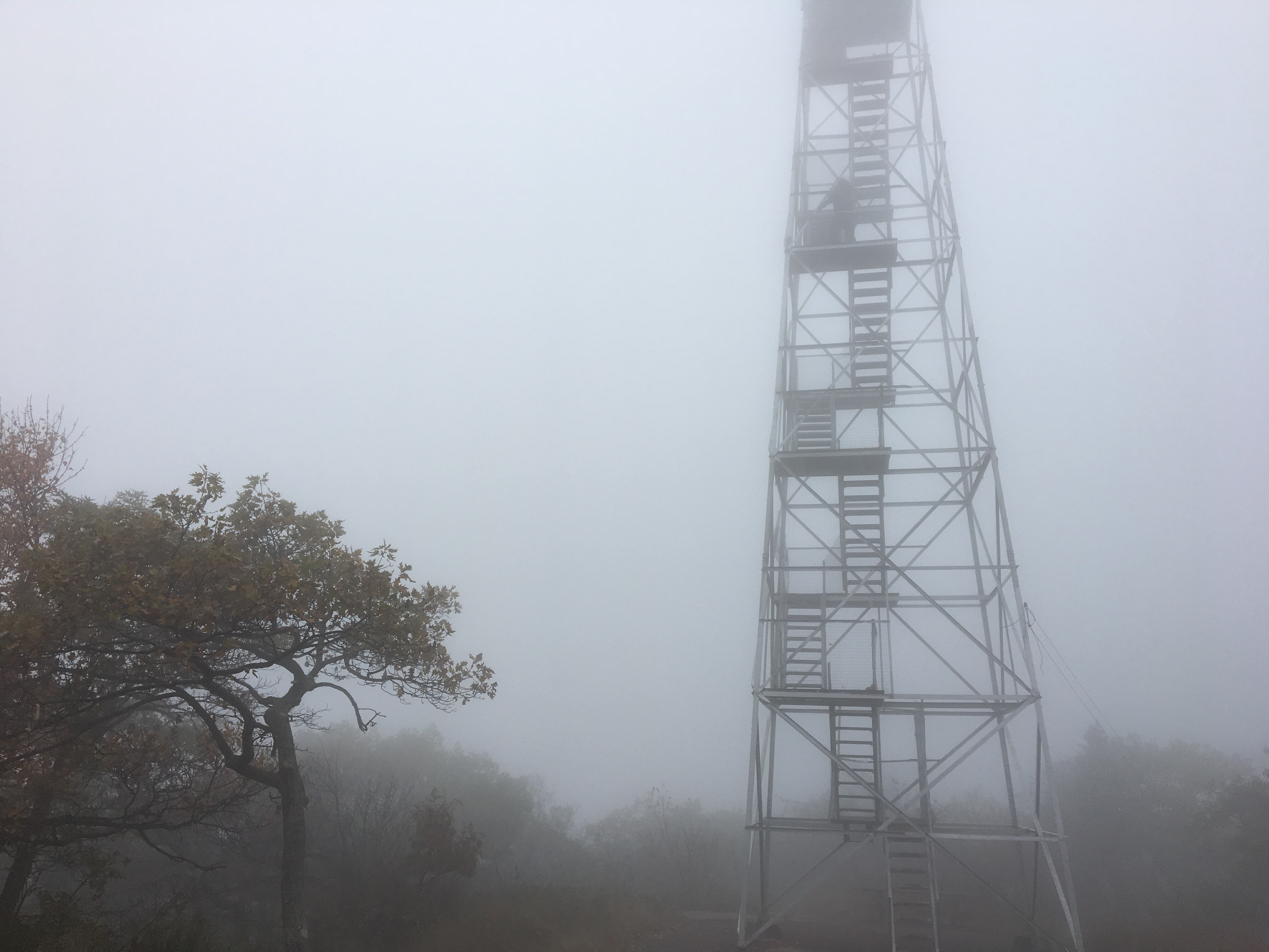 Overlook Tower hike; fire tower, Catskills, NY