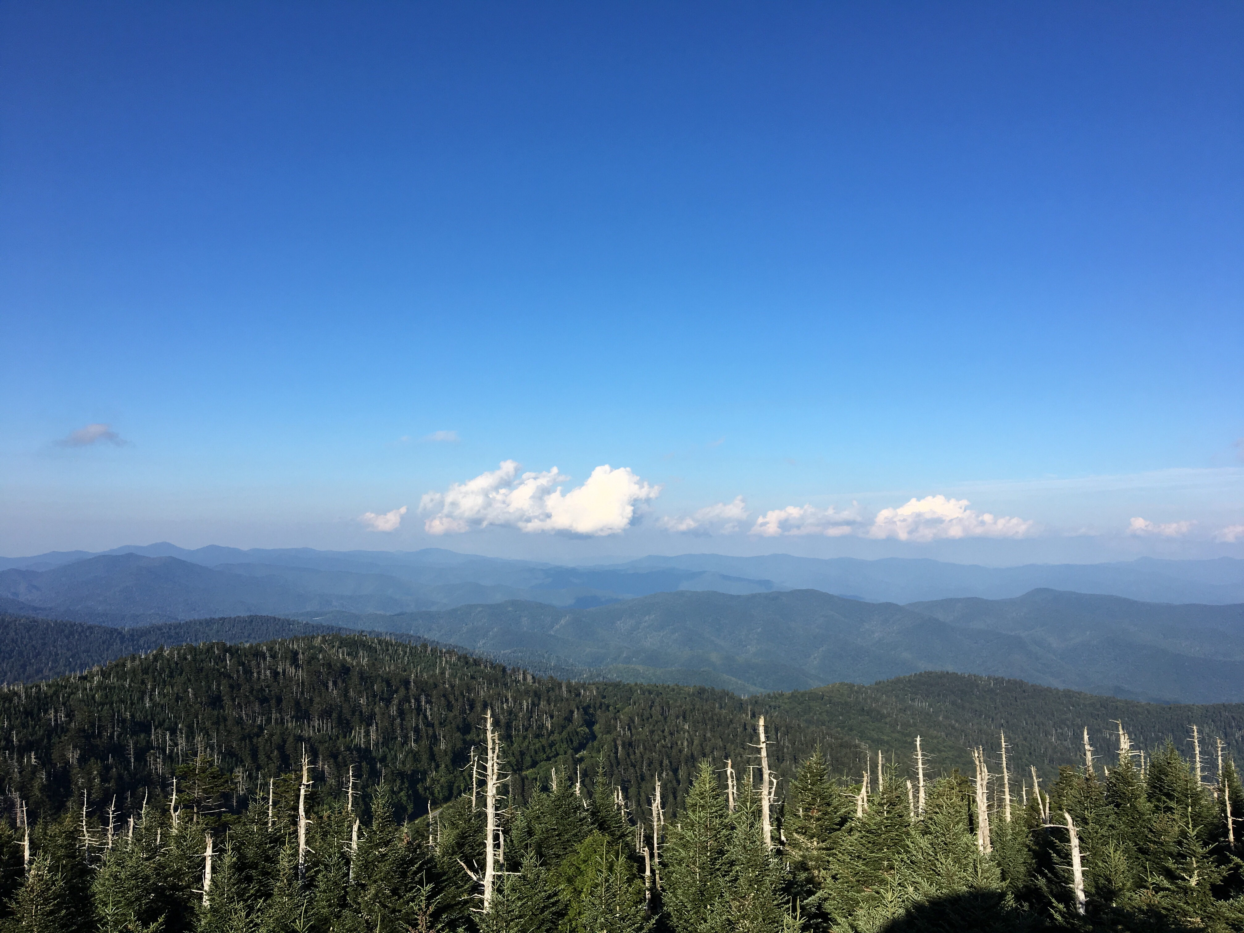 View from Clingman's Dome, Great Smoky Mountains National Park