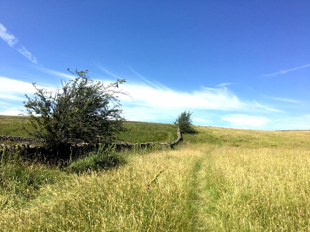 Pennine Way landscape