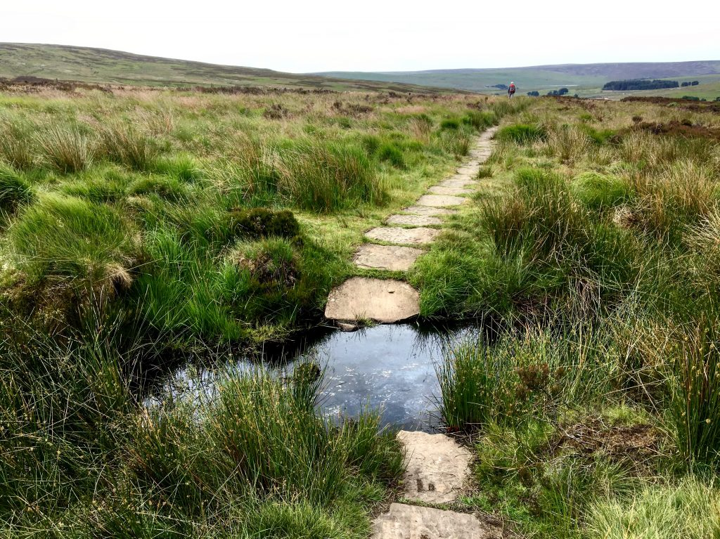 walking through the bogs, Pennine Way