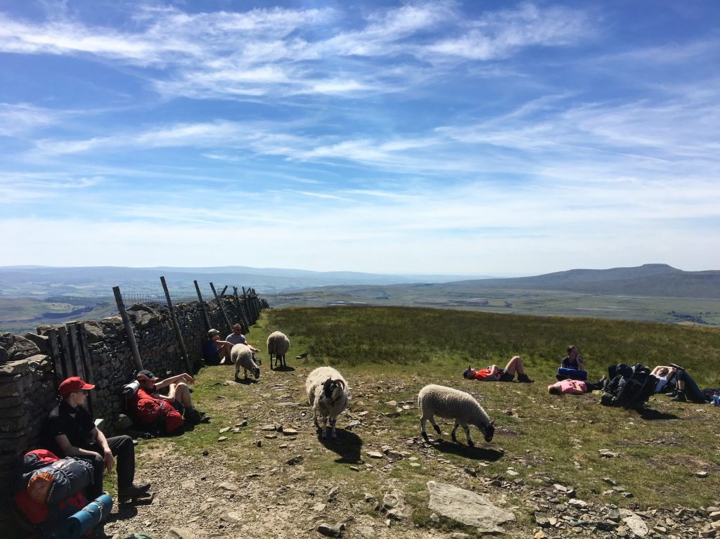 Hikers at top of Pen-y-Ghent, Pennine Way