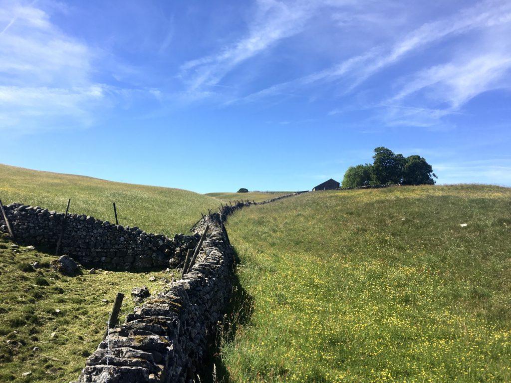 stone wall, Pennine Way
