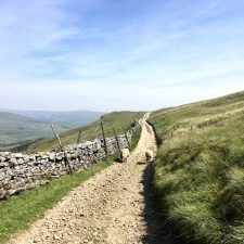 Day 7 on the Pennine Way; Horton-in-Ribblesdale to Hawdraw, 15-miles