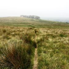 Day 14 on the Pennine Way; Bellingham to Byrness, 15-miles