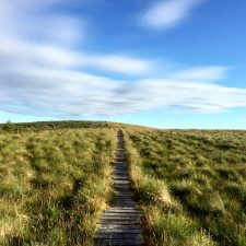 Day 15 on the Pennine Way: Byrness to Kirk Yetholm, 26-miles