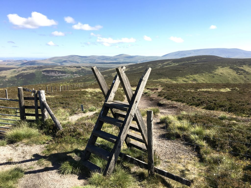 Stile in the Cheviots, last day on the Pennine Way