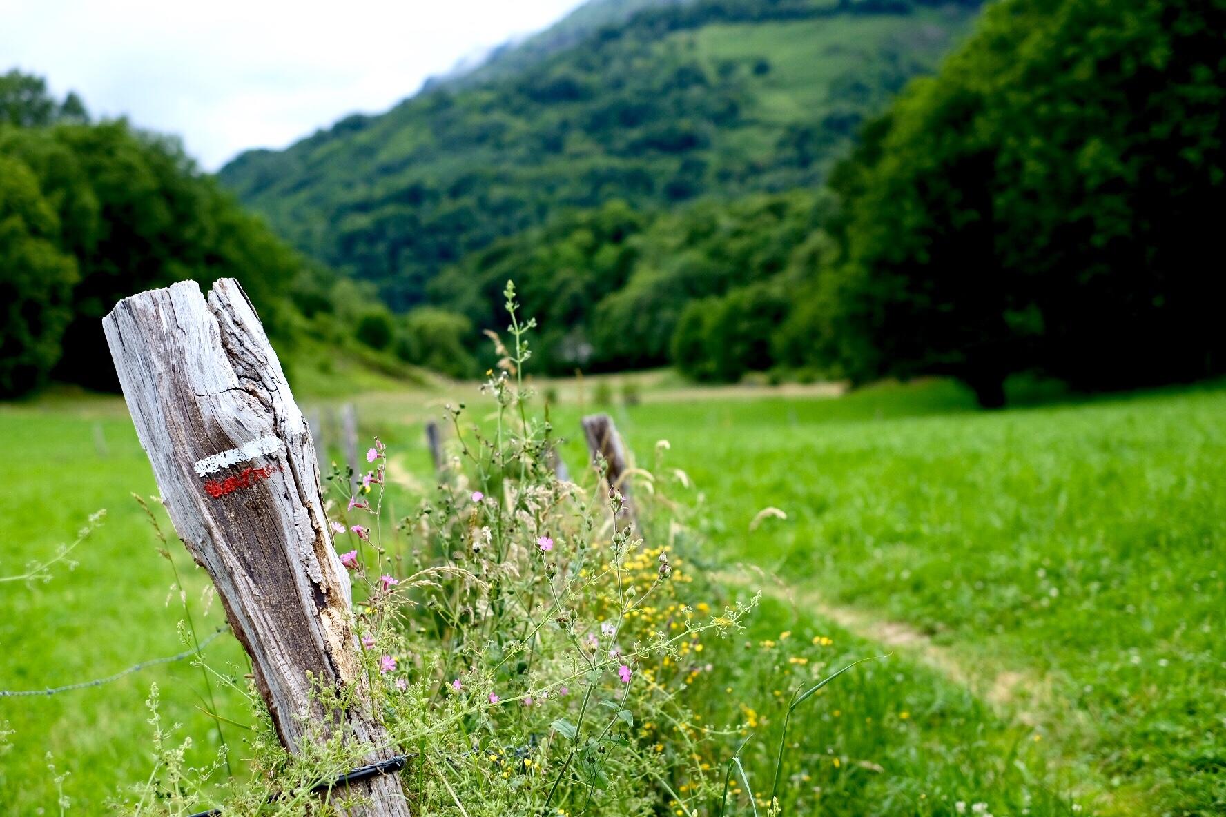 The Camino Aragones: the perfect Camino