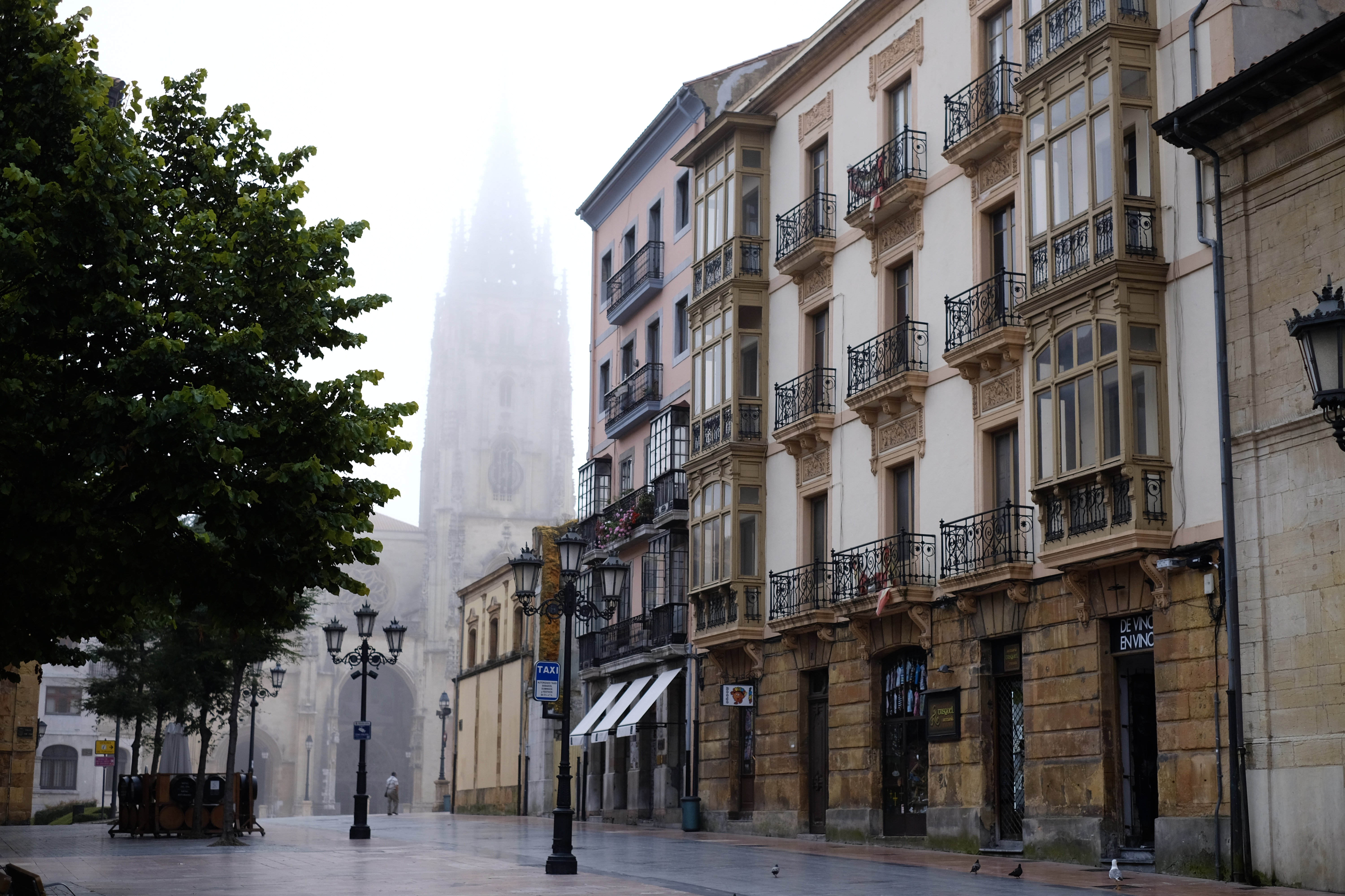 15 photos that might make you plan a walk on the Camino del Norte; Oviedo cathedral in fog