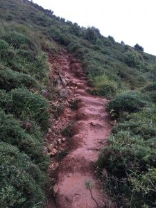 Path up El Brusco, Camino del Norte, 2019