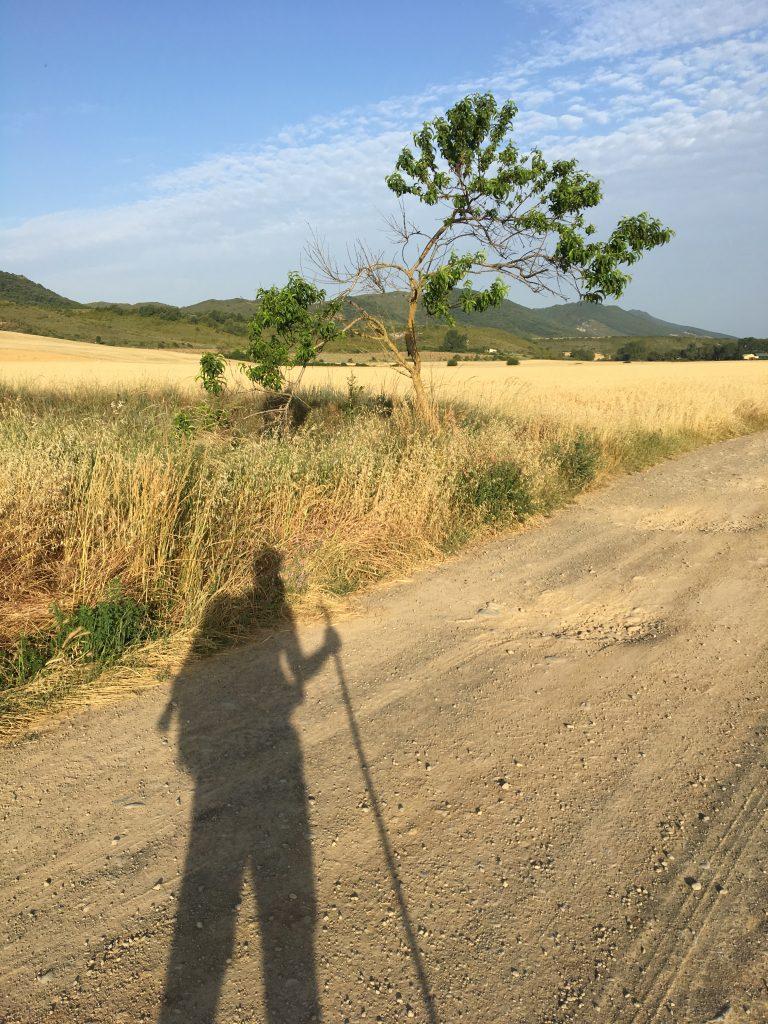 Pilgrim shadow; Camino Aragonés