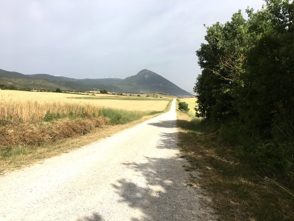 A little shade on the Camino Aragonés