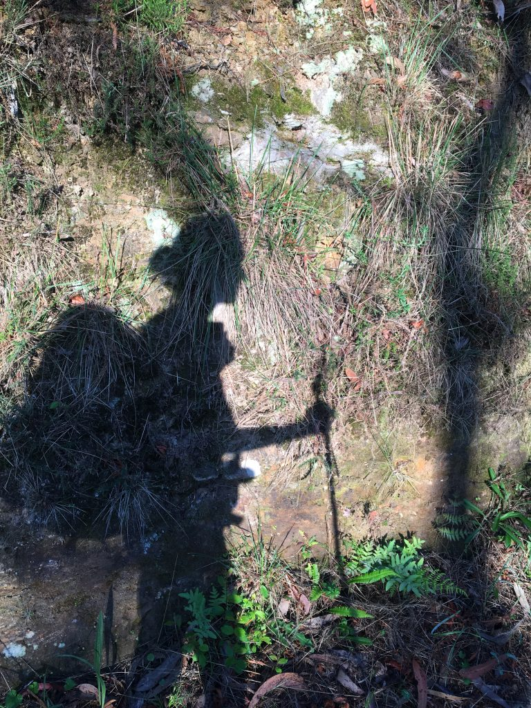 Pilgrim shadow with stick
