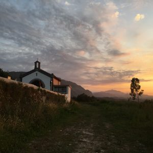 Italians and Puppies and 19-year old Knees; Highlights of the Camino del Norte