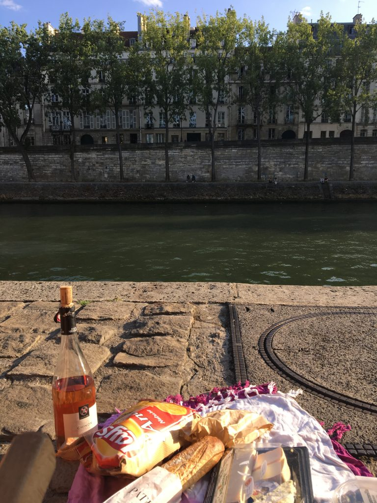 Summer picnic along the Seine, Paris, France