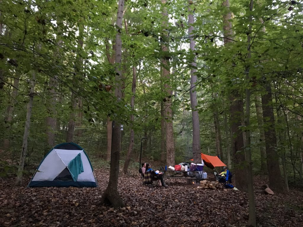Campsite in Ohiopyle State Park, Western PA