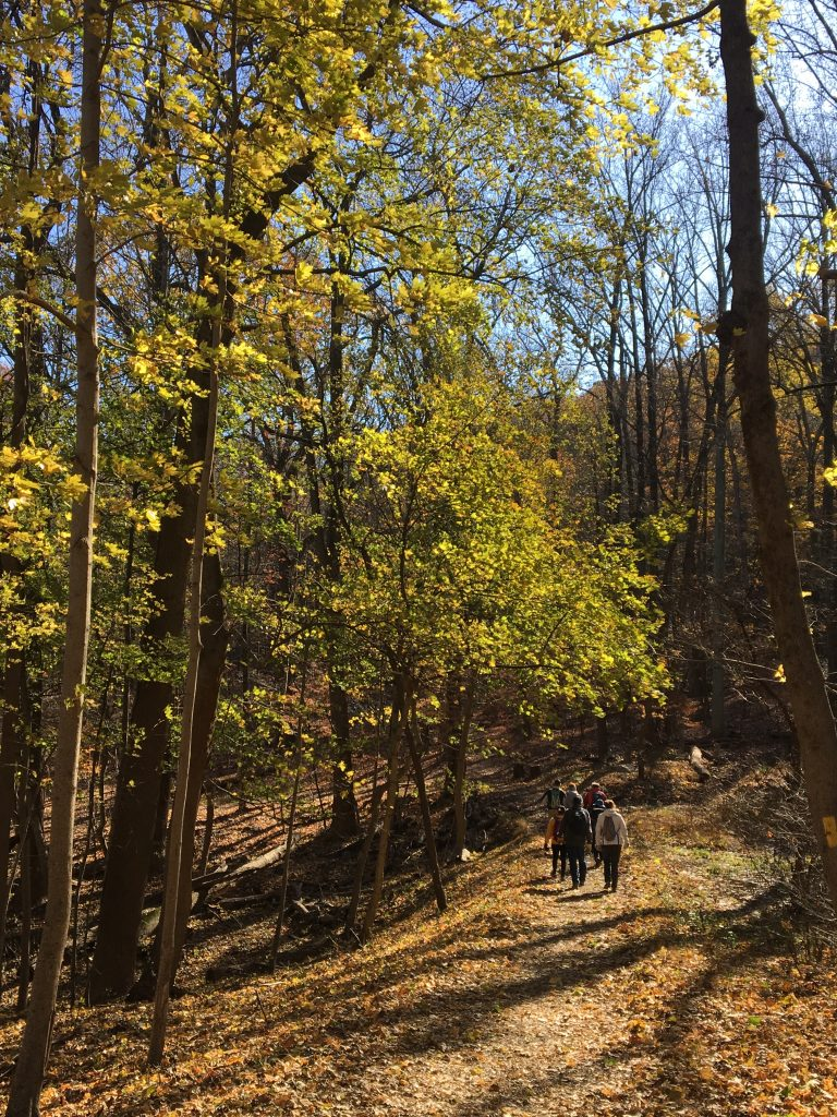 Hike in Valley Forge National Park with Americans on the Camino Philadelphia chapter
