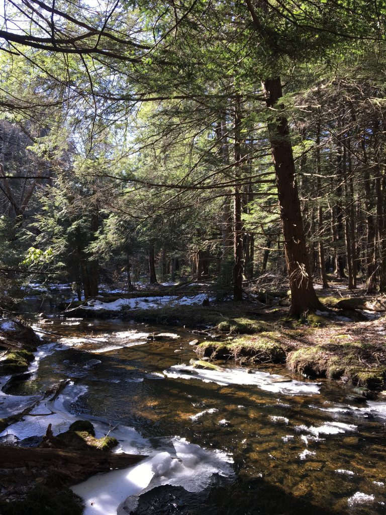 Hiking in the Poconos Mountains, PA