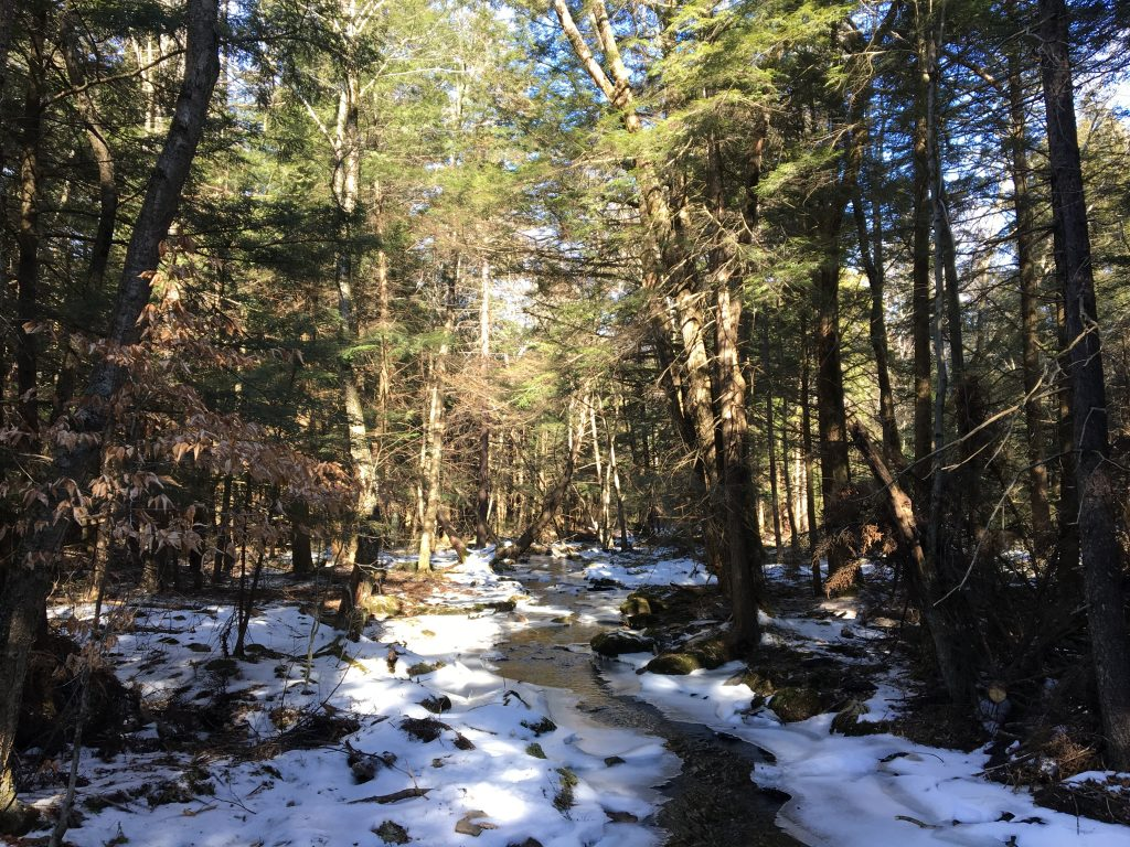 Winter stream in the Poconos