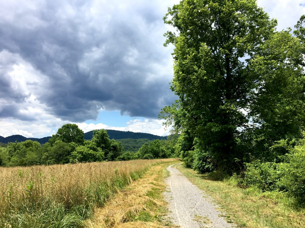 storms clouds on the C&O canal towpath
