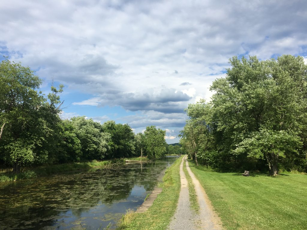 view on the C&O canal towpath
