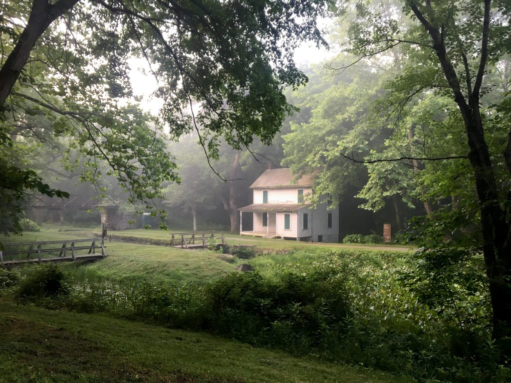 misty morning on the C&O canal towpath