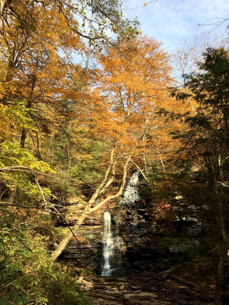 Great Falls Loop, Ricketts Glen State Park, PA