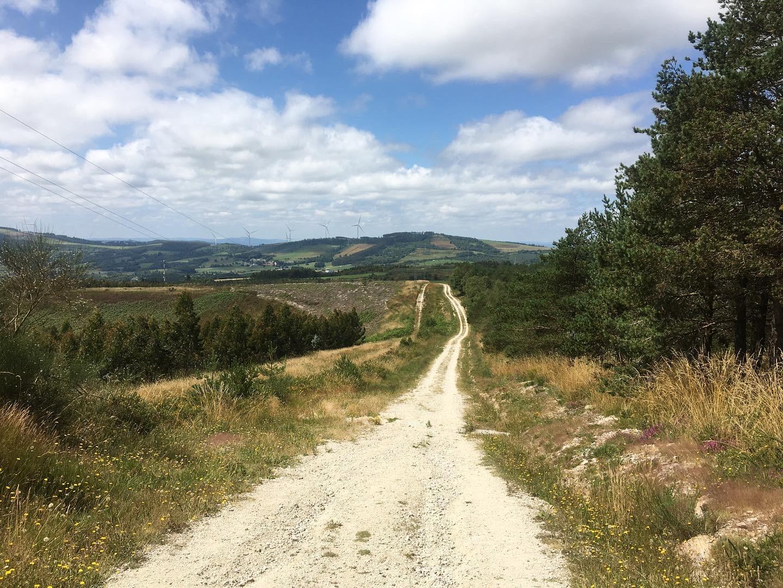 Long path of the Camino Primitivo