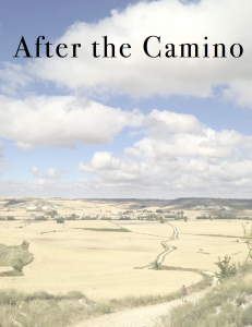After the Camino e-book cover image