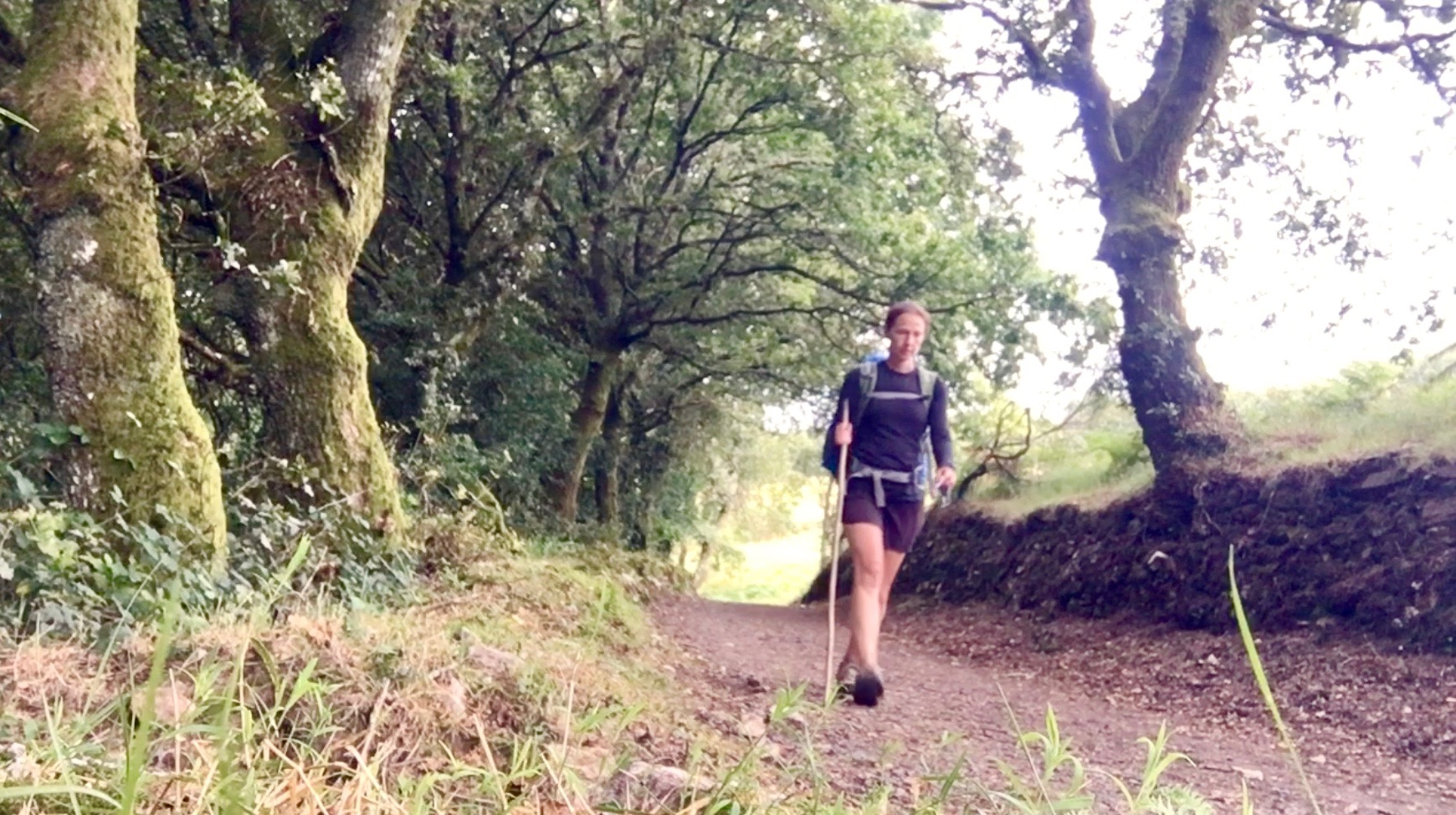 Walking the last kilometers of the Camino Primitivo